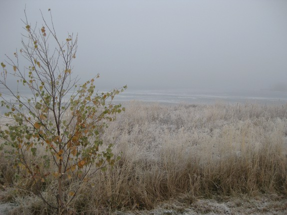 Mist over het ijs
