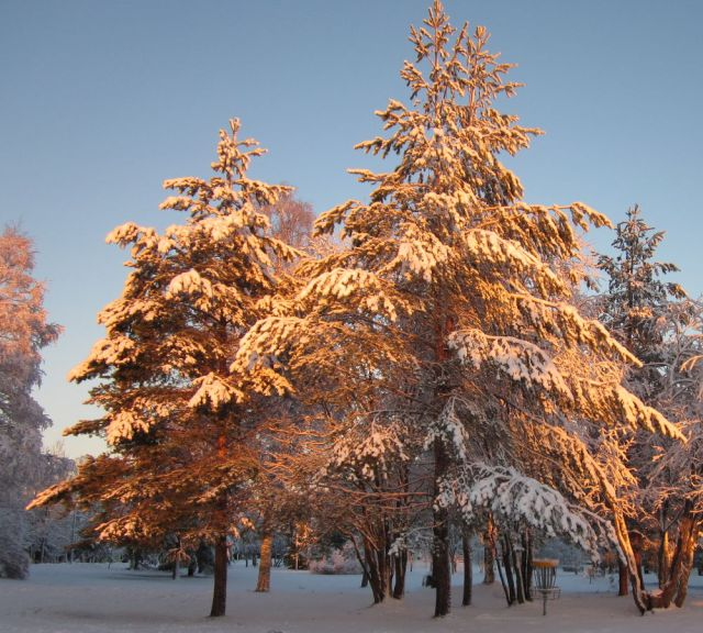 een dagje winter